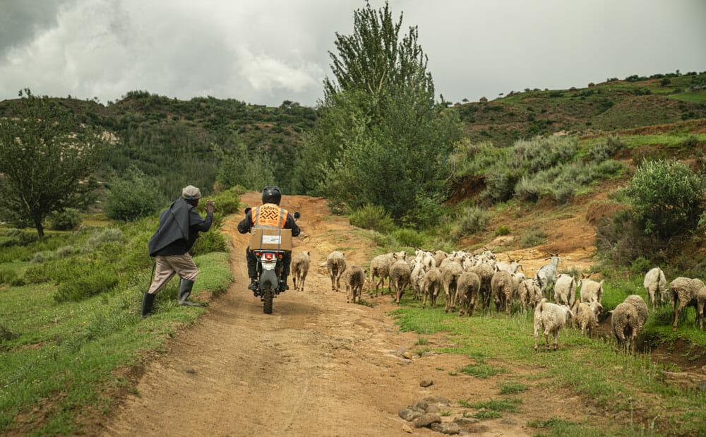Lesotho, healthworker, scenery